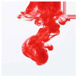 LifeStyle Lab Logo